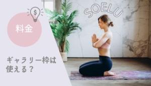 【最新】SOELU(ソエル)料金 ギャラリー枠はお得に使えるのか解説